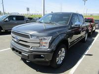 2019 Ford F-150 Platinum Ecoboost SuperCrew 4WD